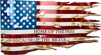 home of the free because of the brave american flag
